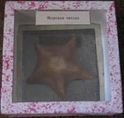 Морская звезда - малая